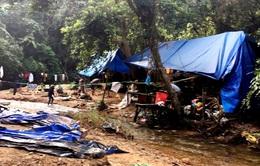 """Quảng Nam: Truy quét hàng trăm """"vàng tặc"""" ở mỏ vàng Bồng Miêu"""