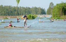 Người dân vùng đầu nguồn phấn khởi đón cá mùa nước nổi