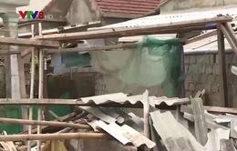Giá vật liệu xây dựng tăng bất thường tại Hà Tĩnh sau bão