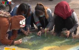 Cần Thơ: Sinh viên vẽ tranh trên nắp cống tuyên truyền bảo vệ môi trường