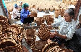 """Lâm Đồng: Triển khai """"Mỗi xã nông thôn mới một sản phẩm"""""""