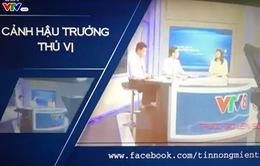Trang Fanpage chính thức của VTV8