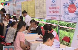 TP.HCM tổ chức Ngày hội việc làm cho phụ nữ