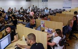 Thị trường việc làm Brazil chuyển biến tích cực