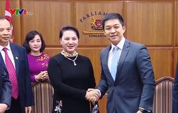 """""""Việt Nam coi trọng phát triển quan hệ Đối tác chiến lược với Singapore"""""""