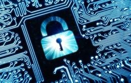 Trung Quốc ghi nhận các trường hợp nhiễm mã độc Petrwrap