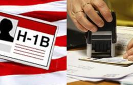 Số lượng đơn đăng ký visa H1-B giảm lần đầu tiên sau 5 năm