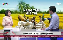 """""""Việt Nam không thể tiếp tục sản xuất, xuất khẩu gạo bằng mọi giá"""""""