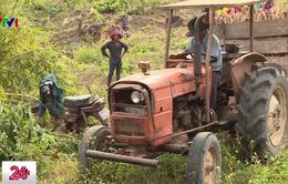 Bình Thuận: Phát hiện thêm hàng trăm hộ dân bị tráo máy nông cụ