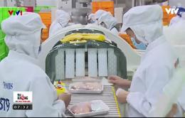 Doanh nghiệp suy nghĩ gì về kế hoạch truy xuất nguồn gốc thịt gia cầm?