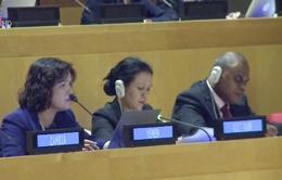 Việt Nam tham dự Hội nghị công ước LHQ về Luật biển