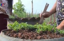 Thanh niên Việt Nam giúp thanh niên Lào phát triển kinh tế