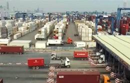 Khai mạc Diễn đàn kinh doanh Việt - Nga 2017