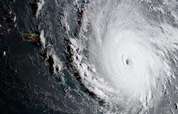 Những kỷ lục của siêu bão Irma