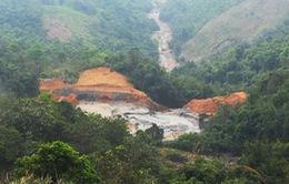 Làm rõ nguyên nhân vỡ đập chứa bùn thải ở Nghệ An