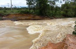 Mưa lớn gây vỡ đập Cố Châu ở Hà Tĩnh