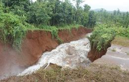 Vỡ đê hồ Gia Hoét gây thiệt hại hàng tỷ đồng