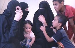 Cuộc sống của những người vợ phiến quân IS