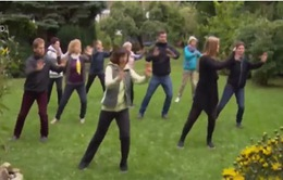 Rèn luyện sức khỏe với môn võ thuật Thái cực quyền