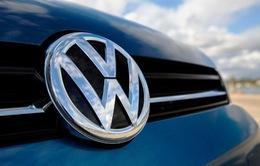 Australia kiện hãng xe Volkswagen về gian lận khí thải