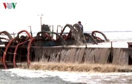 Bắt giữ 11 sà lan chở cát lậu tại TP.HCM