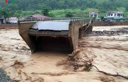 Clip về trận lũ quét kinh hoàng ở Yên Bái, Sơn La khiến nhiều người chết và mất tích
