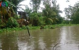 Người dân Vĩnh Long bất lực trước nạn hút trộm cát sông