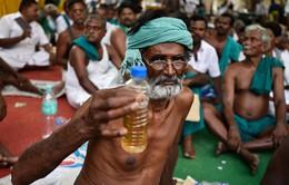 Nông dân Ấn Độ uống... nước tiểu biểu tình vì hạn hán