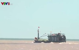 Ngư dân Quảng Bình vươn khơi trở lại sau bão