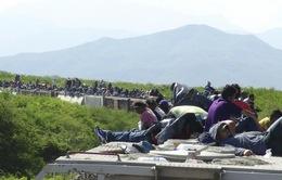 Góc khuất trên hành trình vượt biên của người di cư tới Mỹ