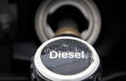 Thiệt hại từ bê bối khí thải của Volkswagen lên đến 30 tỷ USD