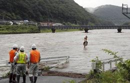 20.000 người sơ tán do mưa lớn tại Nhật Bản