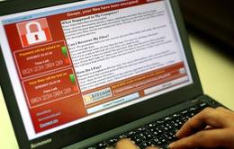 Cố tình phát tán virus WannaCry tại Việt Nam có thể bị phạt tù đến 12 năm