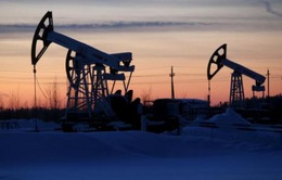 WB công bố báo cáo dự báo giá dầu năm 2017