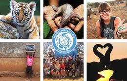 Liên Hợp Quốc kêu gọi giới trẻ bảo vệ động vật hoang dã
