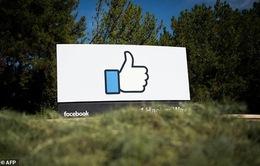 Facebook thu bộn tiền quảng báo nhờ lượng người dùng khủng