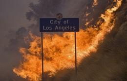Cháy rừng nghiêm trọng nhất trong lịch sử TP Los Angeles, Mỹ