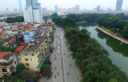 Hà Nội không chủ trương chặt hạ, thay thế 4.000 cây xà cừ