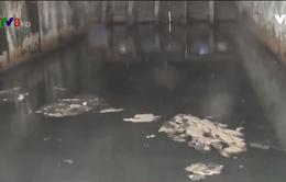 Đà Nẵng phạt nhà thầu lén xả thải ra bãi biển