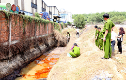 Xử phạt hơn 2 tỷ đồng 9 doanh nghiệp gây ô nhiễm môi trường ở Cà Mau