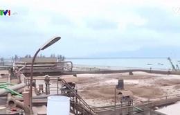 Bồi thường 6,6 tỷ đồng thiệt hại do Nhà máy Đường Khánh Hòa xả thải