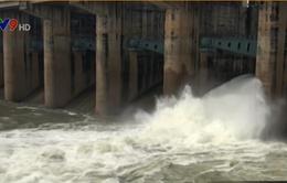 Cần chủ động các biện pháp chống ngập khi thủy điện Trị An xả tràn