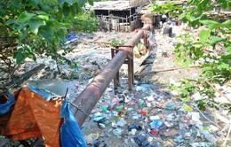 Sẽ phạt nặng hành vi phóng uế bừa bãi ra môi trường