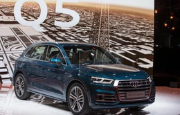 Hàng trăm nghìn xe Audi Q5 bị triệu hồi để khắc phục lỗi tiềm ẩn