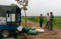 Thanh Hóa: Bắt xe chở nội tạng không rõ nguồn gốc