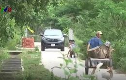 """Quảng Nam: Né trạm thu phí, xe ô tô """"đổ bộ"""" qua đường làng"""