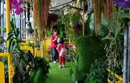 """""""Xe bus rừng xanh"""" hút hồn tại Đài Loan (Trung Quốc)"""