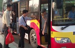 Khách đi xe bus ở TP.HCM tăng 1,5%
