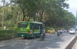 Đình chỉ tài xế lái xe bus chạy ngược chiều trên phố