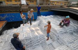 Việt Nam đảm bảo nguồn cung gạo xuất khẩu